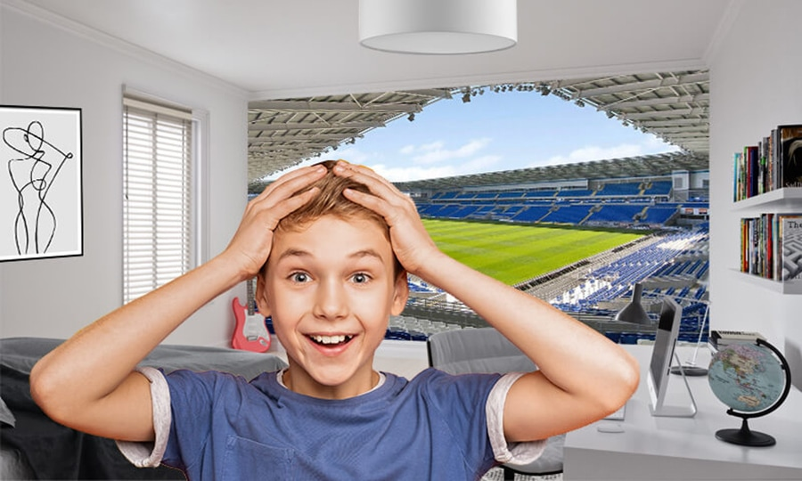 football wallpaper murals ideal for football fans now that the football season has started