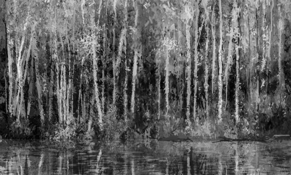 Asthetic Bamboo Forest River in Black and White Wallpaper Mural