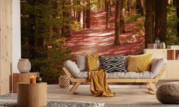 Beautiful Orange Forest Walkway Wallpaper Mural