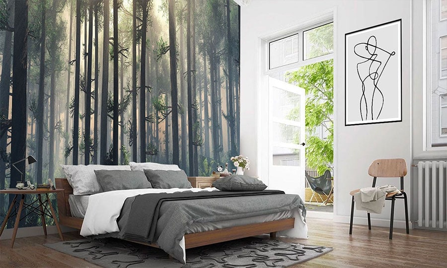 Beautiful misty morning iwoodland forest wallpaper mural