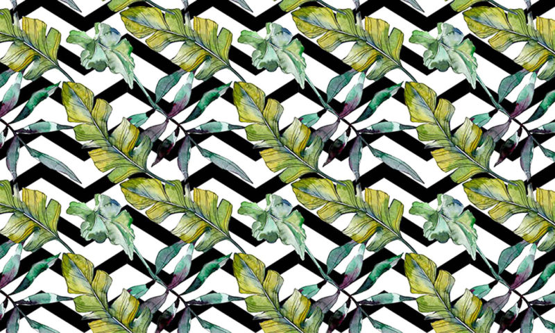 Green Feathery Leaves Wallpaper