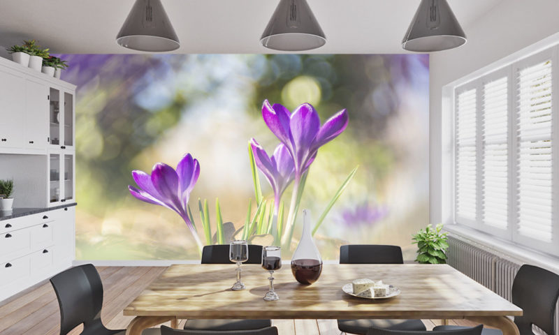 Crocuses In A Forest Wallpaper