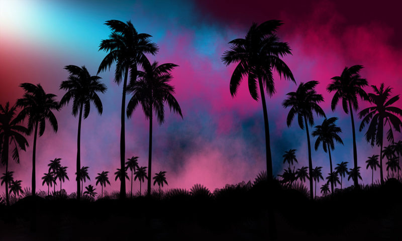 Night Landscape Tropical Forest Mural