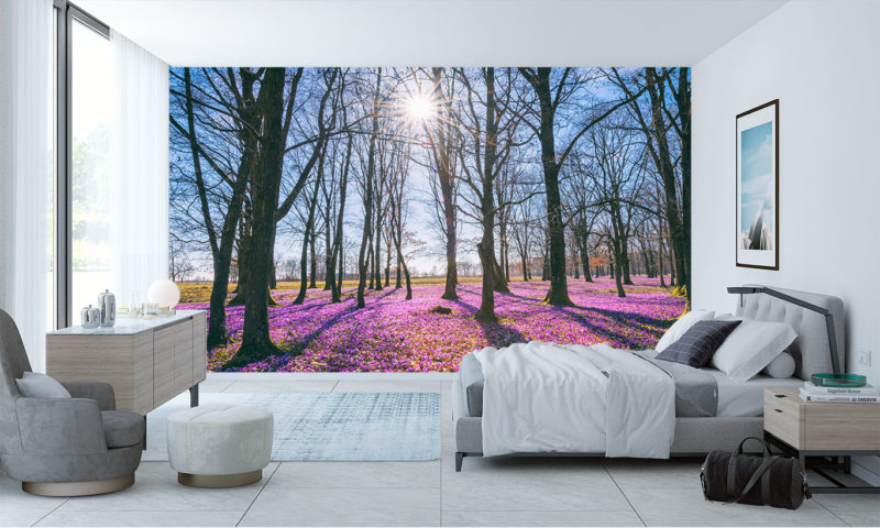 Crocus Sunny Forest Spring Wall Mural