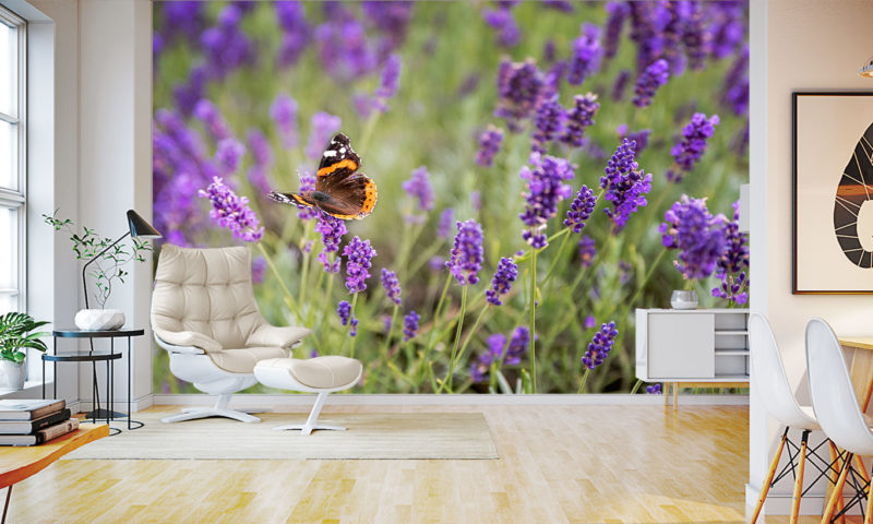Pretty Butterfly And Lavender Wallpaper