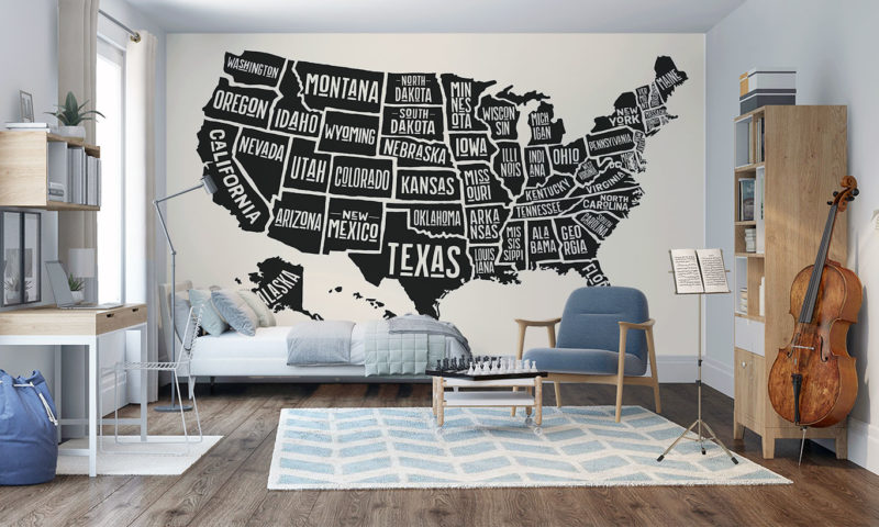 Map of the States of the USA Mural Art