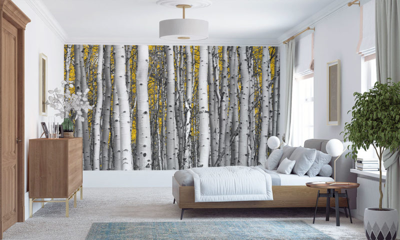 Compact Birch Tree Forest Wall Art