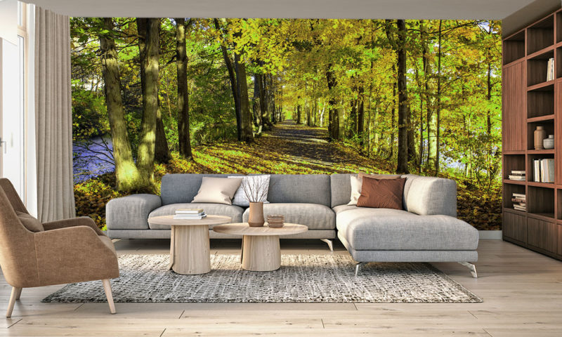 Amazing Serene Forest Walkway by River Wall Mural