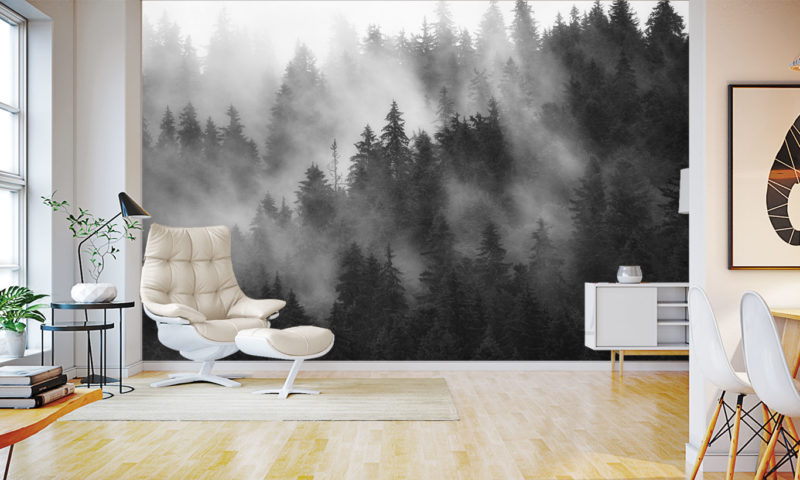 Misty Spruce Tree Forest Wall Mural