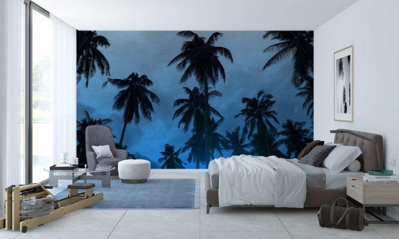 Cloudy Blue-hazed Skyline with Palm Trees Wallpaper