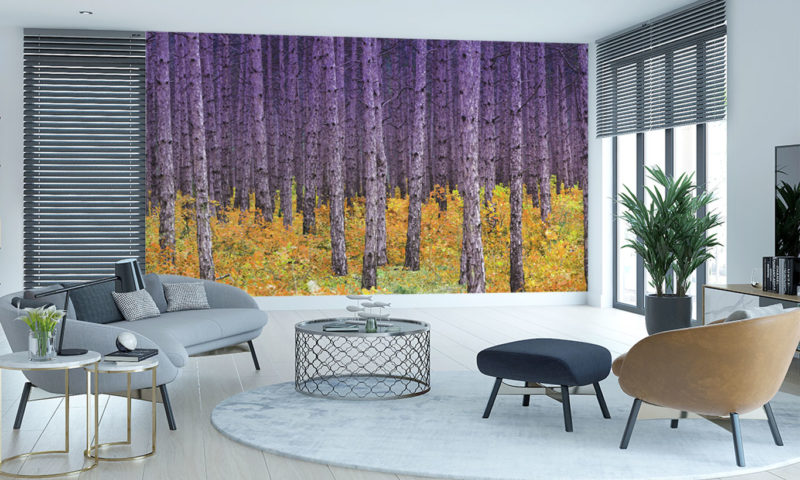 Purple and Yellow Contrasting Trees Wall Mural