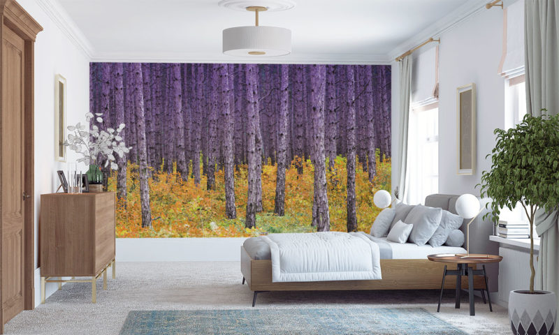 Purple and Yellow Contrasting Trees Wallpaper
