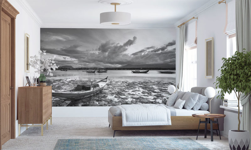 Grayscale Drained Lake Mural