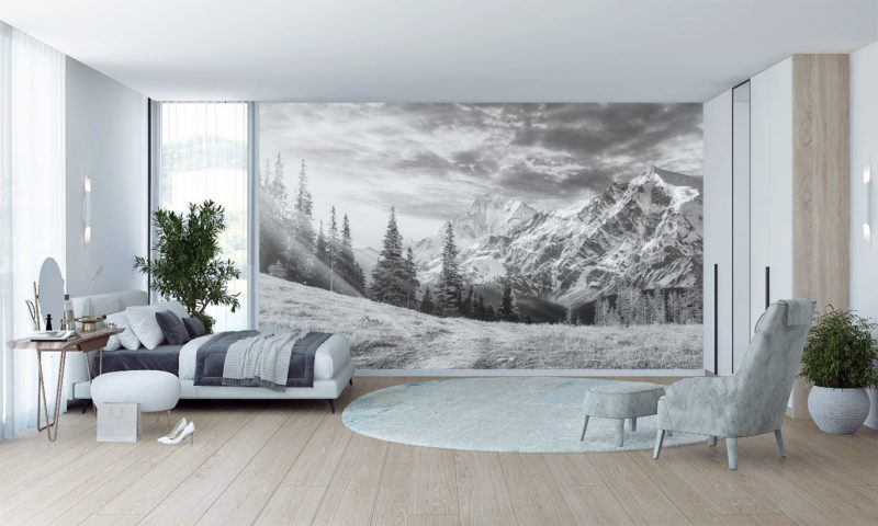 Spruce Trees with Snowy Mountain Wallpaper