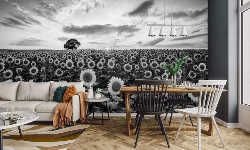 Compacted Sunflower Farm with Oak Tree Mural Wallpaper
