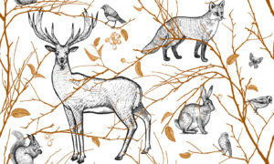 Animals Of The Forest Wallpaper Mural