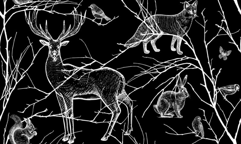 Black And White Animals Of The Forest Wall Mural