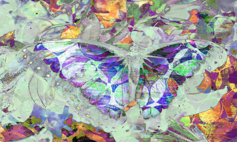 Inverted-Butterfly with Wings Spread Wallpaper Mural